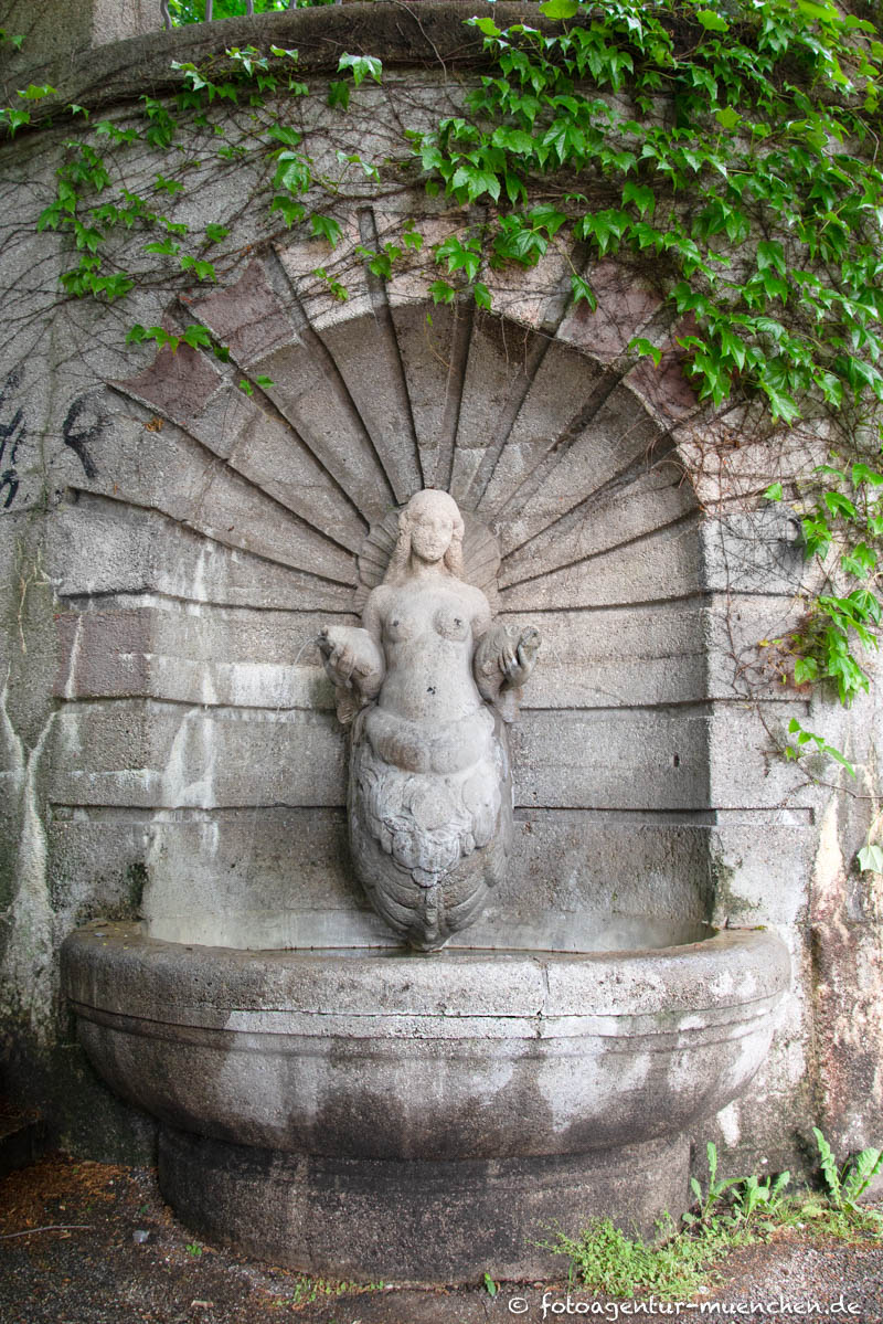 Brunnenweibchen, Nymphe